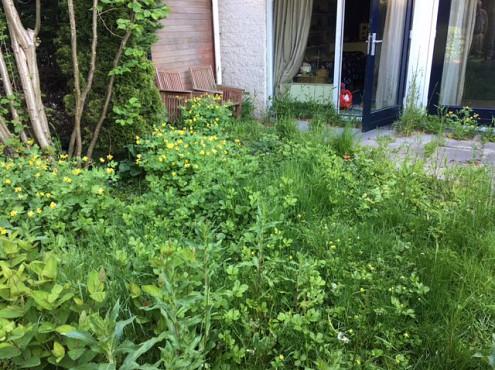 Tuin opschonen koopwoning door Woningontruiming CVS